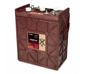 WET аккумулятор Trojan: 6В-271А/ч (С5)
