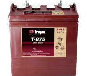 WET аккумулятор Trojan: 8В-145А/ч (С5)