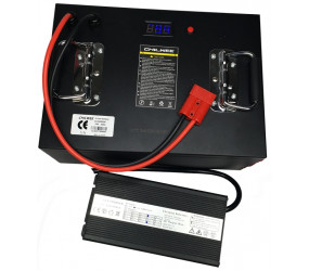 LI-ION аккумулятор CHILWEE: 24В-55А/ч (С5)
